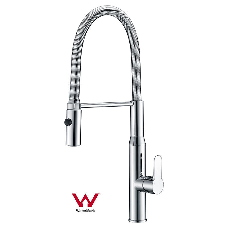 Watermark Approved Pull-out Kitchen Faucet with ABS Spout