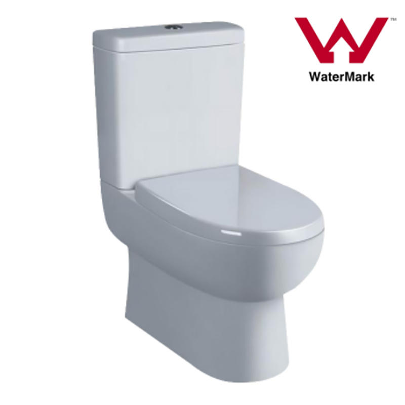 Watermark Two-piece Bathroom Wall-Faced Toilet Suite (6009)