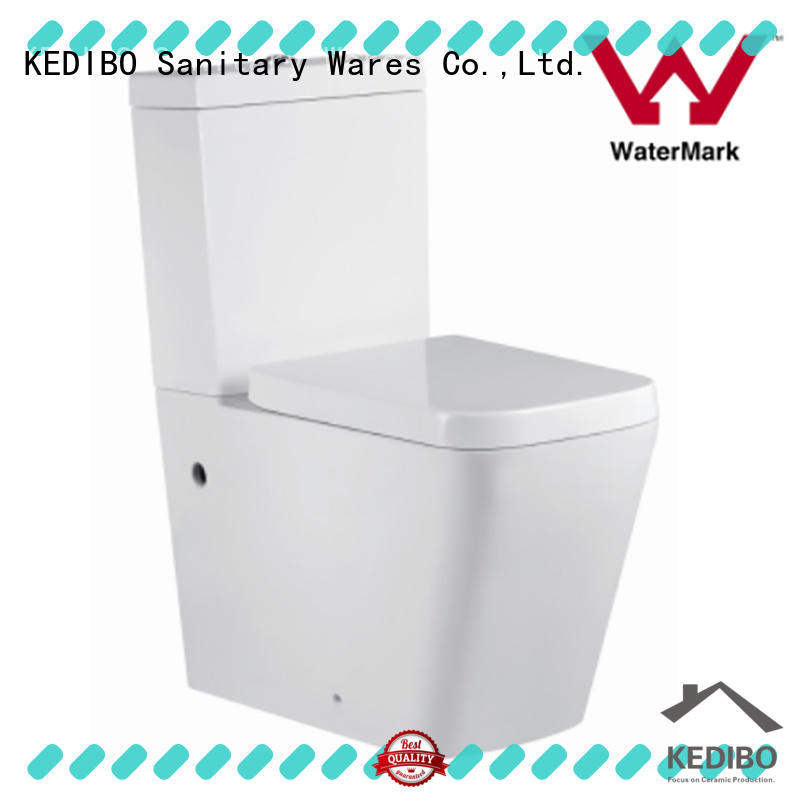 widely used 1 piece toilet design producer for public washroom