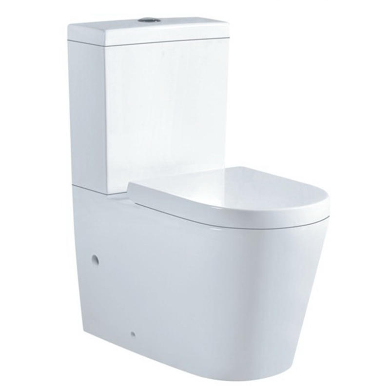 WASHDOWN WATERMARK TWO-PIECE TOILET 6010