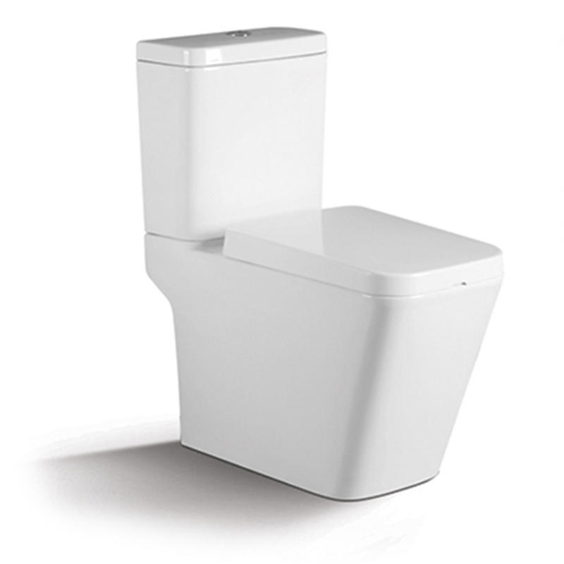 Washdown Two-piece Square Porcelain Toilet Suite 1208A