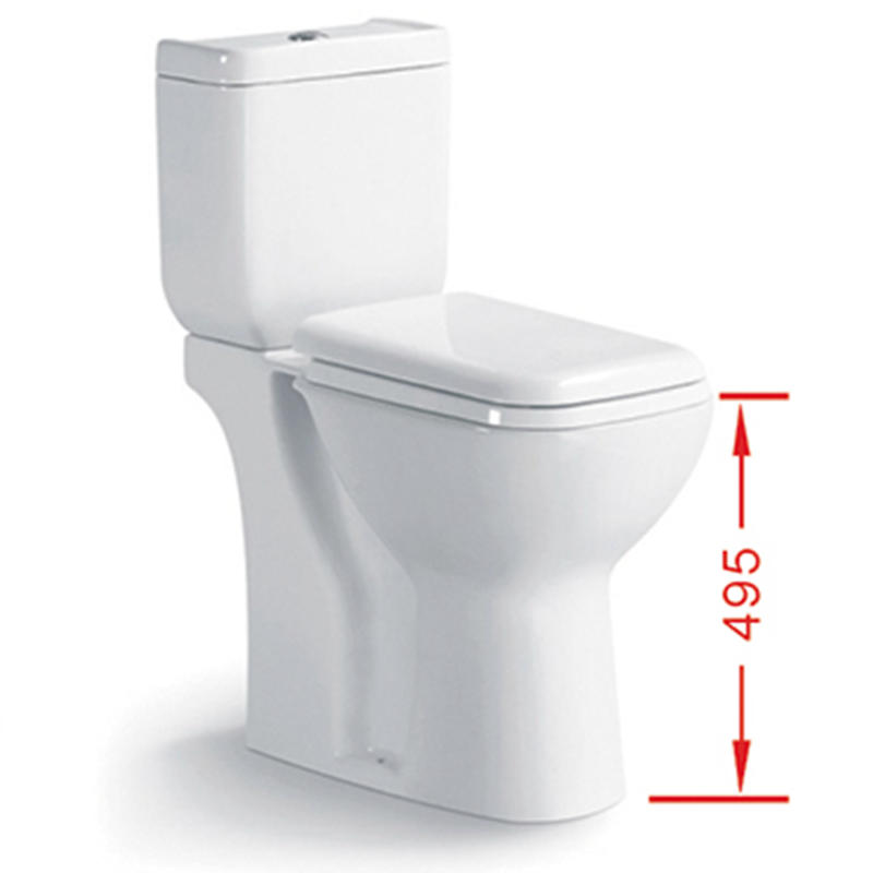 Disable Only Washdown Two-piece  Disable Toilet 040H