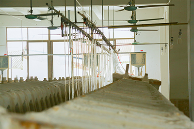 530x370 Bathroom Square High Grade Ceramic Under Mounted Basin 2-2101-12