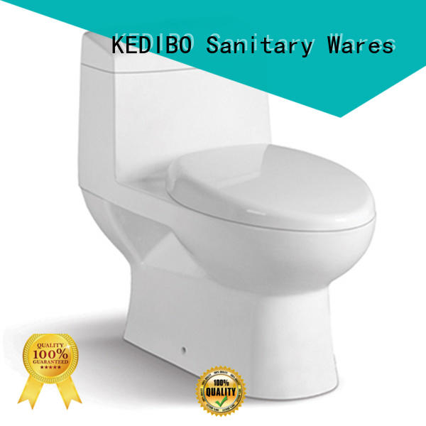 two-piece toilet fashionable watermark various KEDIBO Brand company